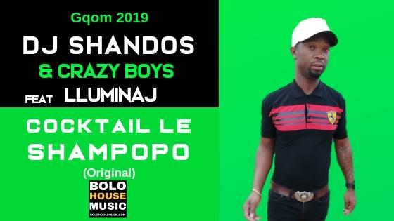 Dj Shandos & Crazy Boys feat Lluminaj - Cocktail Le Shampopo