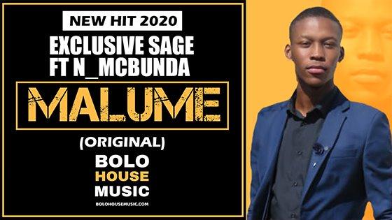 Exclusive Sage - Malume feat N_McBunda