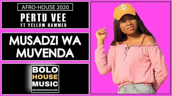 Pertu Vee - Musadzi Wa Muvenda Feat Yellow Hammer