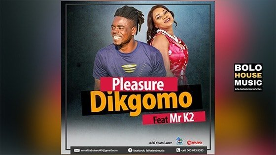 Pleasure - Dikgomo Feat Mr K2