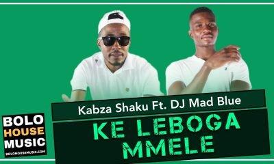 Kabza Shaku - Ke Leboga Mmele Feat. DJ Mad Blue