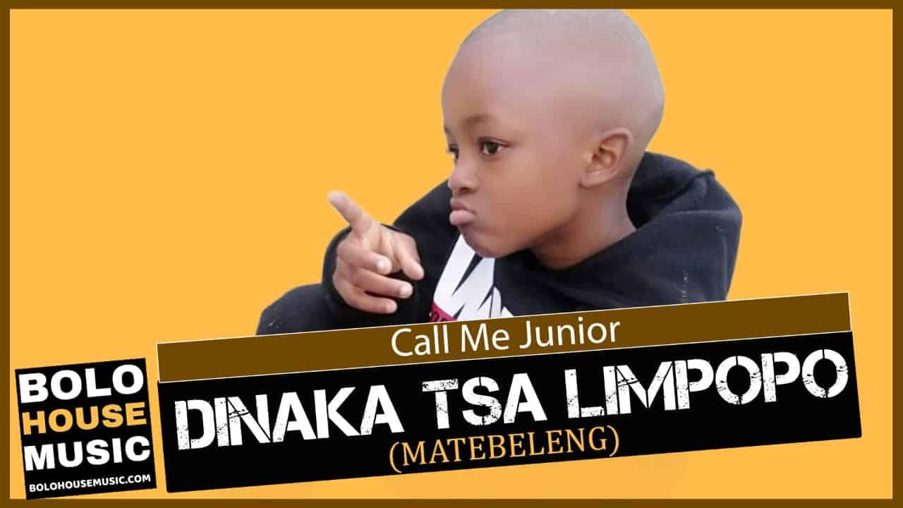 Call Me Junior - Dinaka tsa Limpopo (Matebeleng)