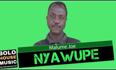 Malume Joe - Nyawupe