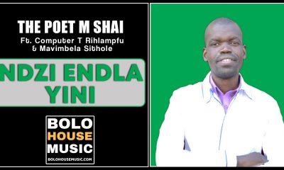 Ndzi Endla Yini - The Poet M Shai