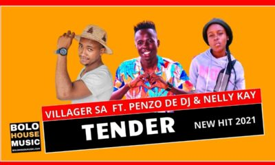 Villager SA - Tender Ft. Penzo De DJ & Nelly Kay