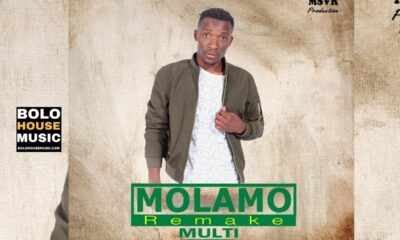 Multi - Molamo (Remake)