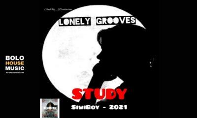 SiwiBoy - Study