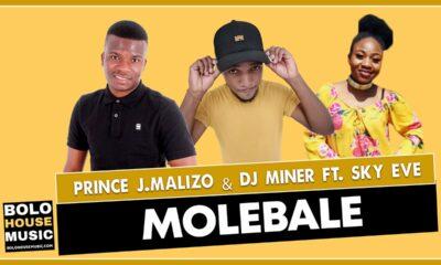 Prince J Malizo & Dj Miner - Molebale feat. Sky Eve