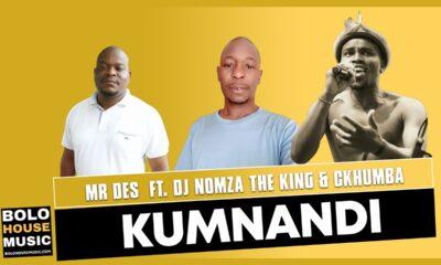 Mr Des - Kumnandi
