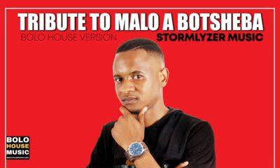 Stormlyzer Music - Tribute to Malo A Botsheba
