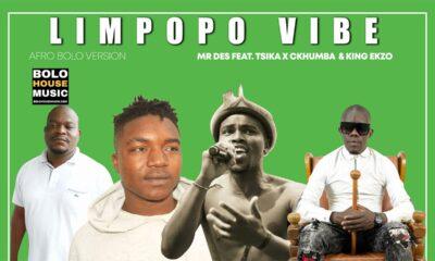 Mr Des - Limpopo Vibe